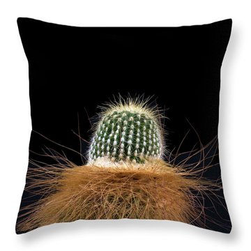 Cactus Photo Throw Pillow by Catherine Lau