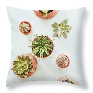 Cactus Pots Throw Pillow