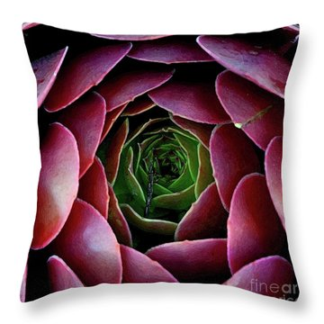 Cactus Rose With Oil Paint Effect Throw Pillow