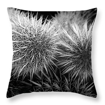 Throw Pillow featuring the photograph Cactus Spines by Phyllis Denton