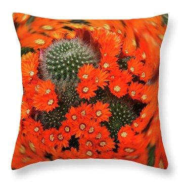 Cactus Swirl Throw Pillow