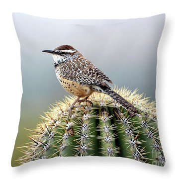 Cactus Wren On Saguaro Throw Pillow