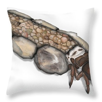 Caddisfly Larva Nymph Goeridae_silo_pallipes -  Throw Pillow