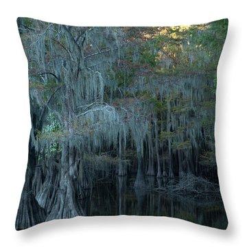 Caddo Lake #2 Throw Pillow