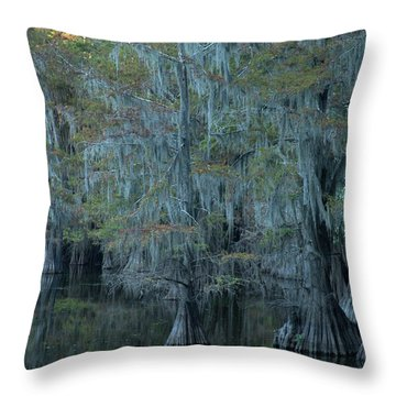 Caddo Lake #3 Throw Pillow
