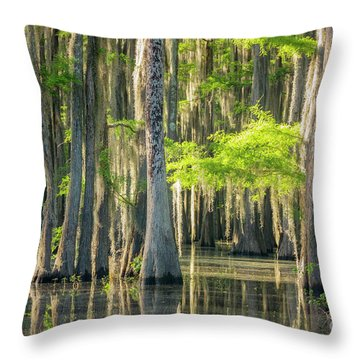 Caddo Swamp 1 Throw Pillow
