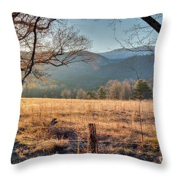 Throw Pillow featuring the photograph Cades Cove, Spring 2017 by Douglas Stucky