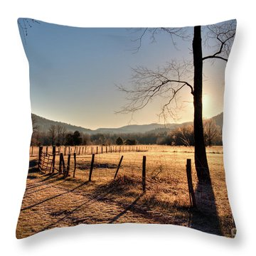 Throw Pillow featuring the photograph Cades Cove, Spring 2017,i by Douglas Stucky