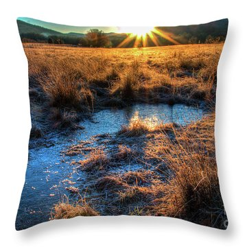 Throw Pillow featuring the photograph Cades Cove, Spring 2017,ii by Douglas Stucky
