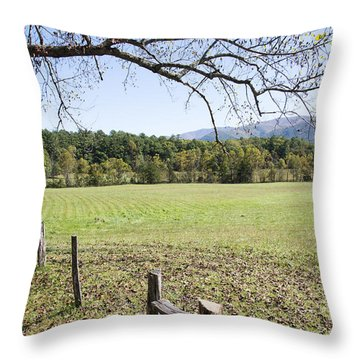 Cades Fence Throw Pillow