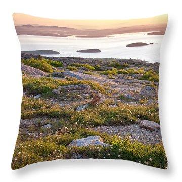 Cadillac Mountain View Throw Pillow