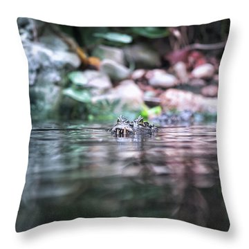 Throw Pillow featuring the photograph Caiman by Traven Milovich