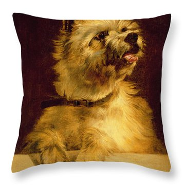 Cairn Terrier   Throw Pillow by George Earl