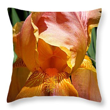 Cajun Sunset Throw Pillow
