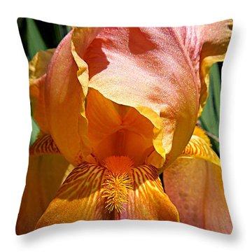 Cajun Sunset Throw Pillow
