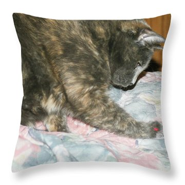 Cal-1 Throw Pillow