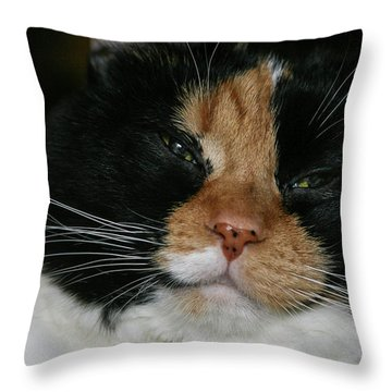 Cal-2 Throw Pillow