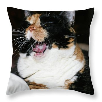 Cal-3 Throw Pillow