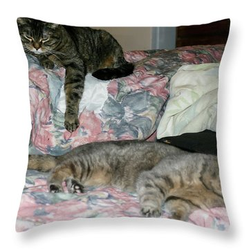 Cal-4 Throw Pillow