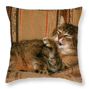 Cal-5 Throw Pillow