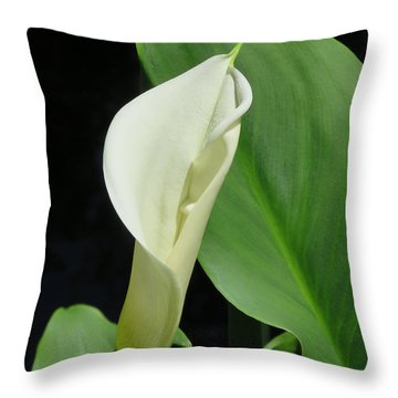 Cala Lily  Throw Pillow