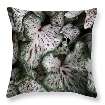 Throw Pillow featuring the photograph Caladium Leaves by Debi Dalio