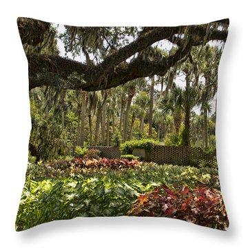 Caladium Under The Oaks Throw Pillow by Sandra Anderson