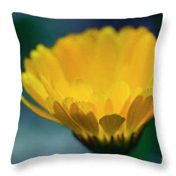 Throw Pillow featuring the photograph Calendula by Sharon Mau