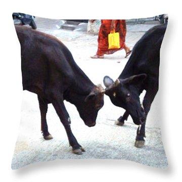 Calf Fighting Throw Pillow