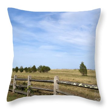 Calf Pasturepoint Throw Pillow