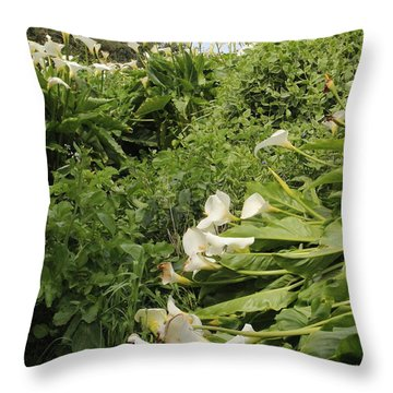 Throw Pillow featuring the photograph Cali Can You Hear Me by Marie Neder