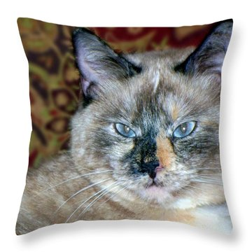 Throw Pillow featuring the photograph Cali-mese by Betty Northcutt