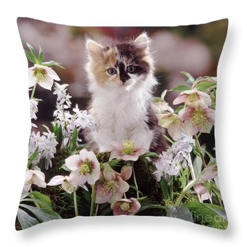Calico And Scillas Throw Pillow