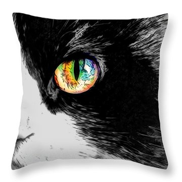 Calico Cat With A Splash Throw Pillow
