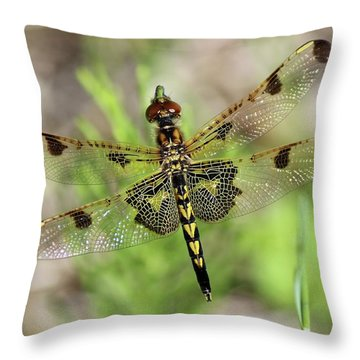 Calico Pennant  Throw Pillow