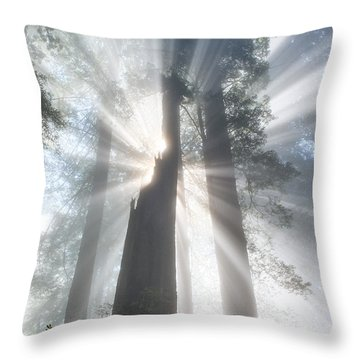 Throw Pillow featuring the photograph California Beamin'  by Patricia Davidson