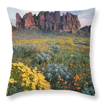 California Brittlebush Lost Dutchman Throw Pillow