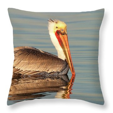 Throw Pillow featuring the photograph California  Brown Pelican by Ram Vasudev