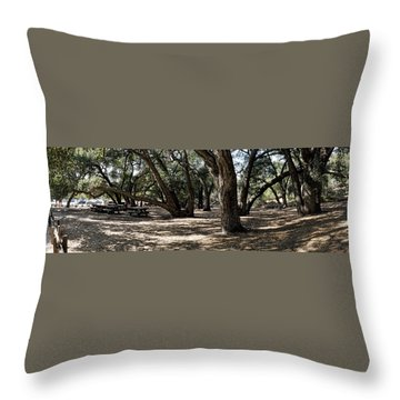 California Canyon Canopy Throw Pillow