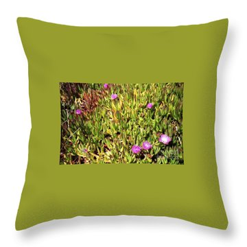 California Coast Ice Plant Throw Pillow by Ted Pollard