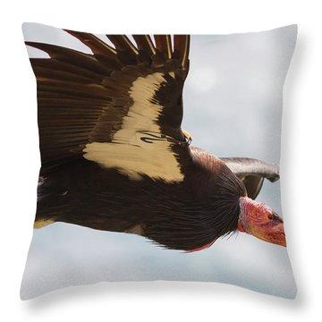 California Condor At Big Sur Throw Pillow