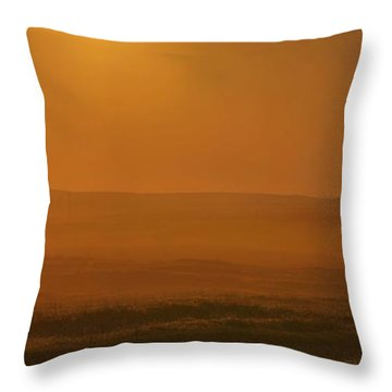 California Dream Throw Pillow