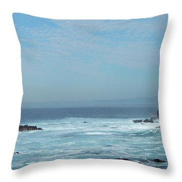 Throw Pillow featuring the photograph California Dreaming by Carol  Bradley