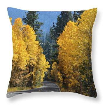 California Gold Throw Pillow