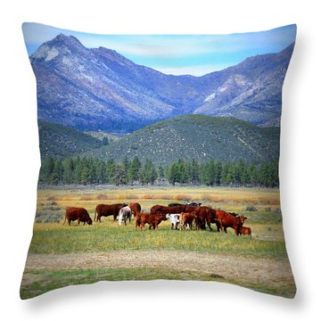 Throw Pillow featuring the photograph California Pastures by Glenn McCarthy Art and Photography