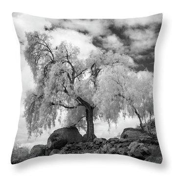 California Pepper Tree Throw Pillow