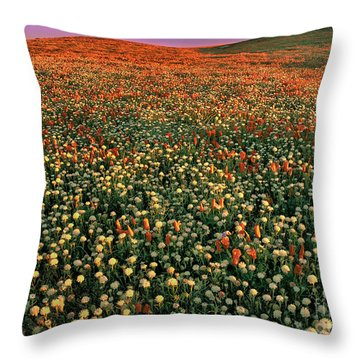 California Poppies At Dawn Lancaster California Throw Pillow