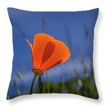 California Poppy Throw Pillow by Marc Crumpler