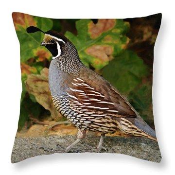 California Quail Rooster Throw Pillow