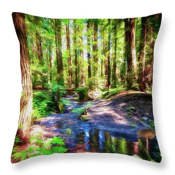 California Redwood Forest Wetlands Ap Throw Pillow